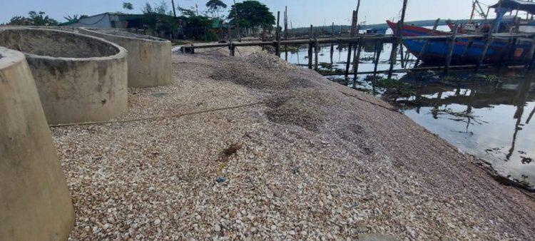 Ô nhiễm môi trường nghiêm trọng tại cảng cá Lạch Vạn