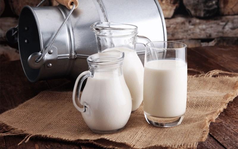 Cách bảo quản thực phẩm sữa an toàn đúng cách